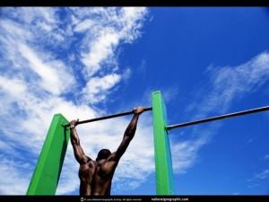 venice-beach-gym