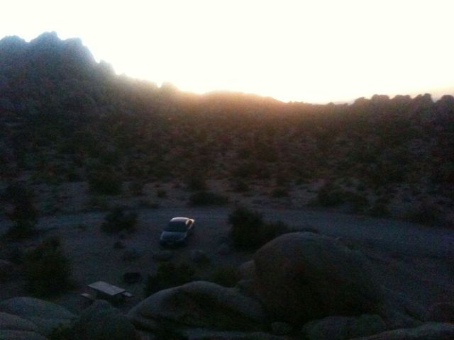 Joshua tree national park camping spot